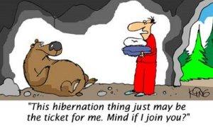 hibernation-789871